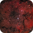 Nebulosa IC 1396,                                Ernesto Arredondo