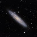 Silver Dólar Galaxy,                                CarlosAraya