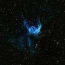 NGC 2359 Thor's Helmet,                                Albert  Christensen
