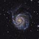 NGC 5457 (Pinwheel-Galaxy),                                Sven Beckerwerth