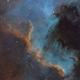 Cygnus Wall in SHO,                                David R