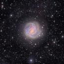M83 the Southern Pinwheel and IFN - With SADR Chili,                                Arnaud Peel