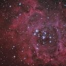 C49 Rosette Nebula HaRGB,                                Nightsky_NL