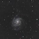 M101,                                Elfie