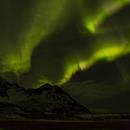 Northern Lights from Senja Norway III,                                Michael Hoppe