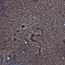 Barnard 72 The Snake Nebula,                                Julian Shaw
