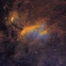 IC4628 - Prawn Nebula,                                Janco