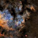 NGC 7822 HaSHO,                                Rodd Dryfoos