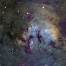 NGC 7822,                                William Jordan