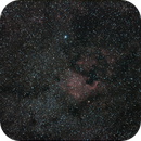 Cygnus of 11.08.08 with a modded 300d and a 75-200 Canon Lens,                                Stefano Ciapetti