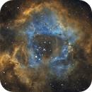 The Rosette Nebula Caldwell 49,                                Irving Pieters