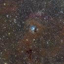 NGC7129,                                LAMAGAT Frederic
