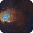 Monkey Head Nebula - QHY600 - Esprit 150 - SHO,                                Eric Walden