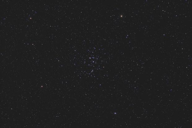 The Beehive Cluster (M44),                                Scott Davis