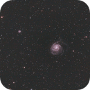 M101,                                Roland_Pirklbauer