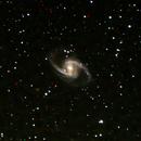 NGC 1365,                                Laurent Briot