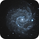 NGC 3184 Spiral Galaxy,                                Jerry Macon