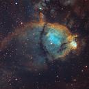 The Fishhead Nebula,                                Andrew Marjama
