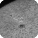Activity Surrounding Sunpot AR2738 (Animation),                                Chuck's Astrophotography