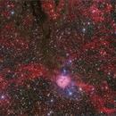 IC5146 Cocon,                                Pavol Kollarik
