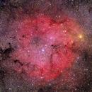 IC 1396 area,                                Paolo Demaria