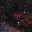 Pelican Nebula (IC5070),                                Manuel J. del Valle