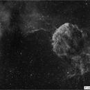 IC 443 Jellyfish Nebula,                                Luís Ramalho