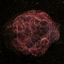 Sh2-240: Spaghetti Nebula,                                Michael Caligiuri