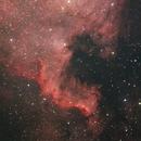 NGC 7000 close up,                                Hermann Mühlichen