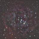 Rosette Nebula, OSC & Bortle 8 Skies (not pretty),                                Trace