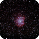 Monkey Head Nebula NGC 2174,                                David Carr