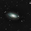 M63 - Sunflower Galaxy,                                scottj05