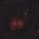 Running Chicken Nebula,                                Wilson