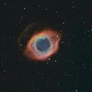 Helix Nebula NGC 7293,                                NelsonAstrofoto
