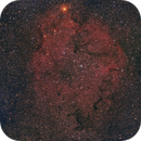 Elephants Trunk IC1396  observed by a Red Cat,                                Niko Geisriegler