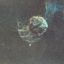 Jellyfish Nebula (IC443 / Sh2-248) in Gemini: first narrowband image in SH(H-S),                                Michele Vonci