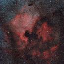 NGC 7000 - North America Nebula,                                Frank Breslawski