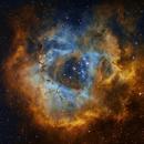 Rosette Nebula in narrowband,                                Geitemans