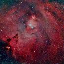 Christmas Tree Nebula,                                Tim Hutchison