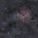 IC1396 Very wide field,                                Jocelyn Podmilsak