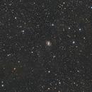 NGC 6951 & IFN,                                FranckIM06