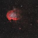 monkey head nebula,                                Astronomono