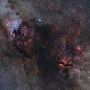 Cygnus complex, from Deneb to Sadr,                                sergio.diaz
