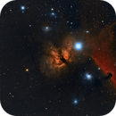 Fiamma NGC 2024 e la Horsehead nebula IC434,                                Alessandro Curci