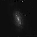 NGC 2903,                                Kevin Galka