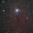 Iris Nebula,                                Petri Kiukas
