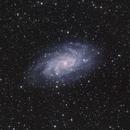 M 33, The Triangulum Galaxy,                                Vladimir Machek