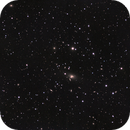 NGC2831 Galaxy Cluster,                                Matt Freed