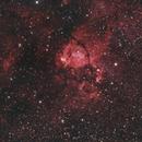 Fish head nebula,                                Francesco