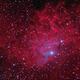 The Flaming Star Nebula,                                Edoardo Luca Radi...